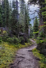 Lake Trail, Lake O'Hara