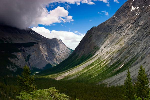 Tangle Ridge, Jasper National Park