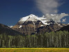 Majestic Mt Robson