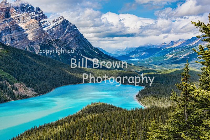 Peyto Lake, Banff National Park, AB