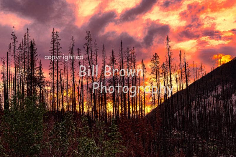 Fiery Sunset Behind Burnt Out Hillside