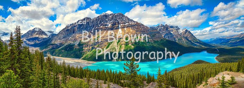 Panoramic View of Glacier Fed Peyto Lake