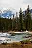 Vertical of Yoho River and mountains