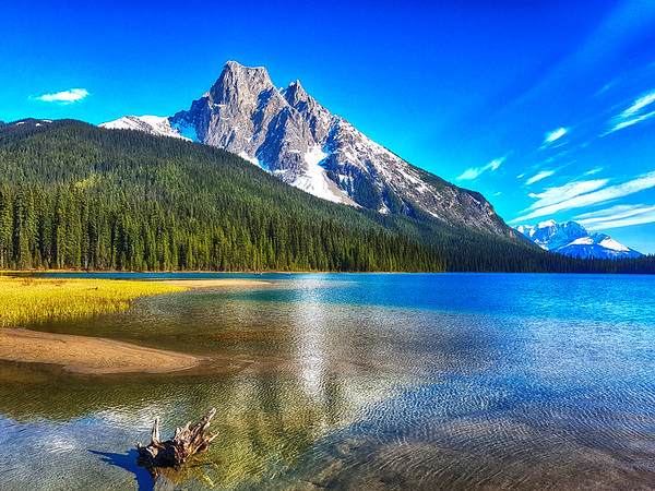 Mountain and pond in Alberta