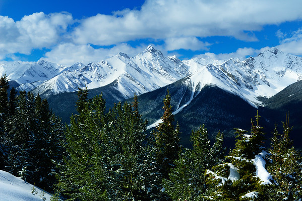 Mountains and trees and snow