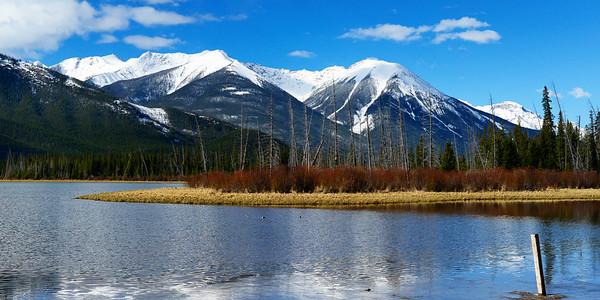 Sulphur Mountain reflecting on Vermillion Lake