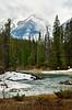Yoho River and mountains