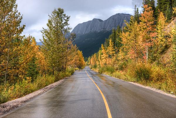 Miette Road