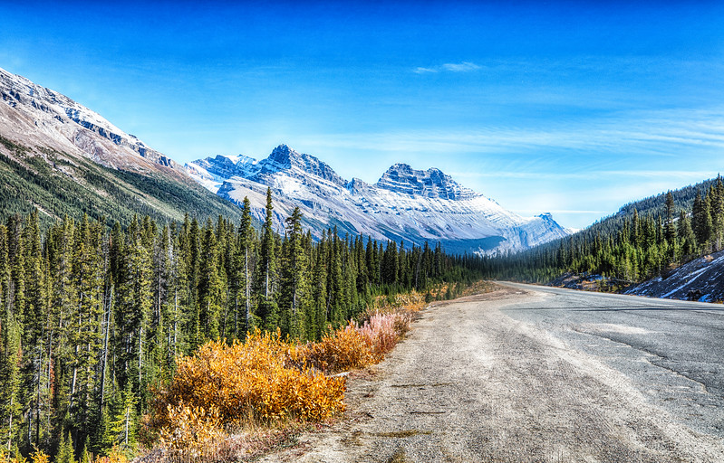 On the road to Maligne Lake