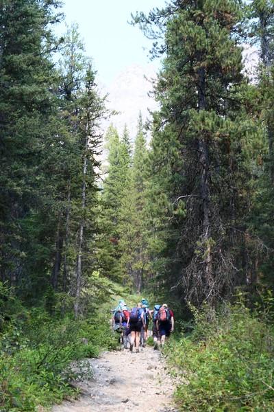 Castle Lookout Trail