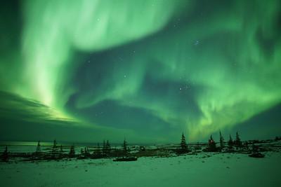 Hit the jackpot with the Aurora Borealis!