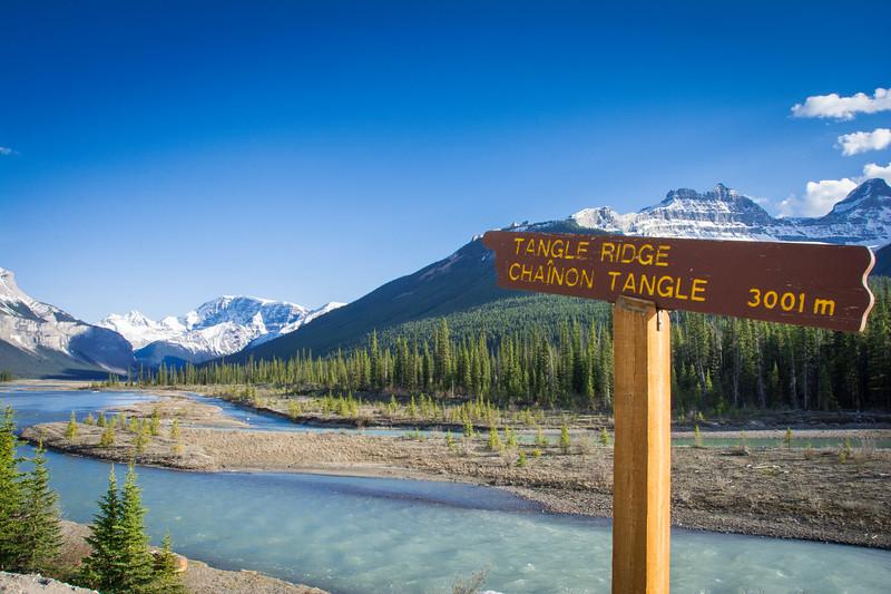 tangle ridge