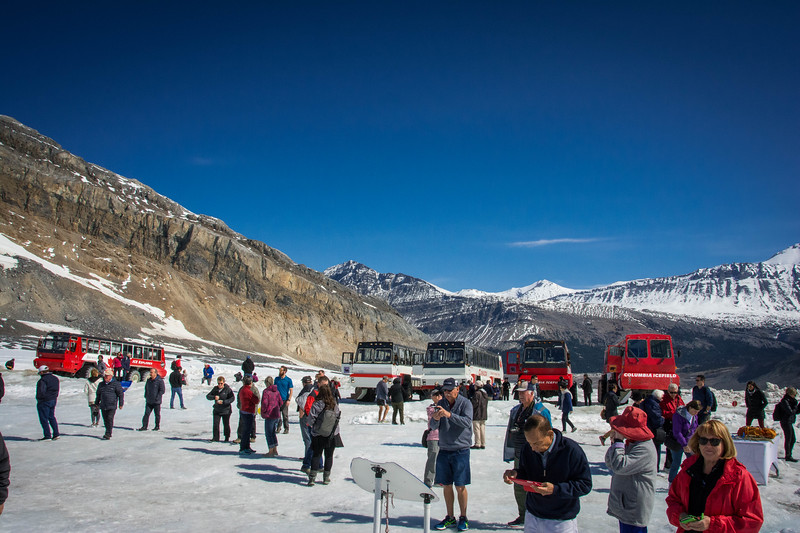 brewster travel canada athabasca glacier