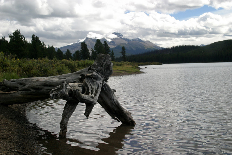 off township road 450A, going to  Maligne Lake, Jasper National Park, Improvement District No. 12, AB T0E, Canada