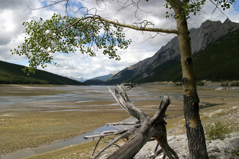 off township road 450A, on the way to  Maligne Lake, Jasper National Park, Improvement District No. 12, AB T0E, Canada