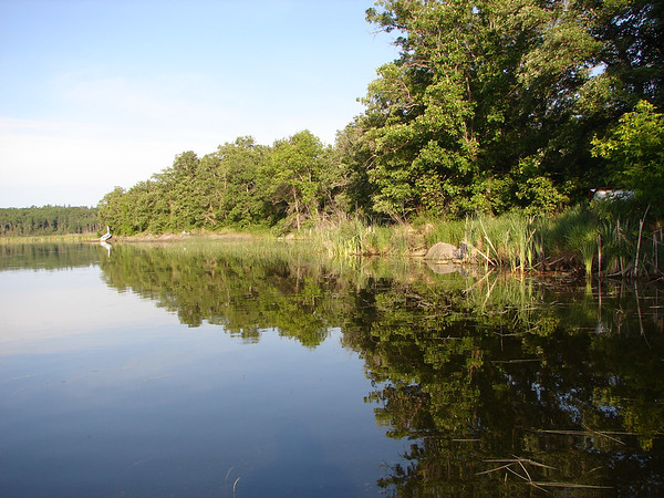 Back waters of Lake Laclu, Canada