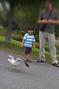 Hijos de Pato persiguiendo palomas