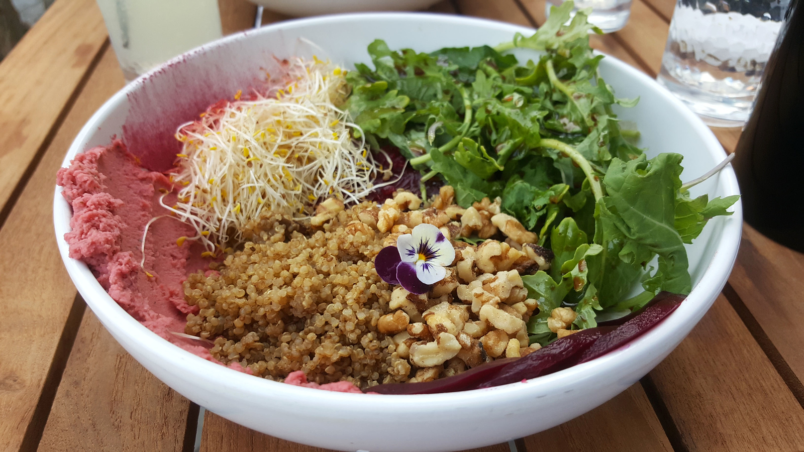 Vegan Restaurants in Winnipeg: A Winnipeg Vegan Guide - Thermea Spa