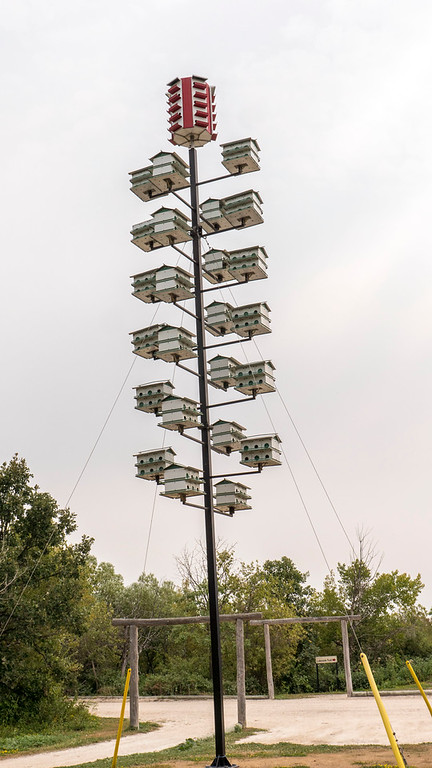 Bird houses at Fortwhyte Alive, Winnipeg. Things to Do in Winnipeg: A Couples Getaway Guide