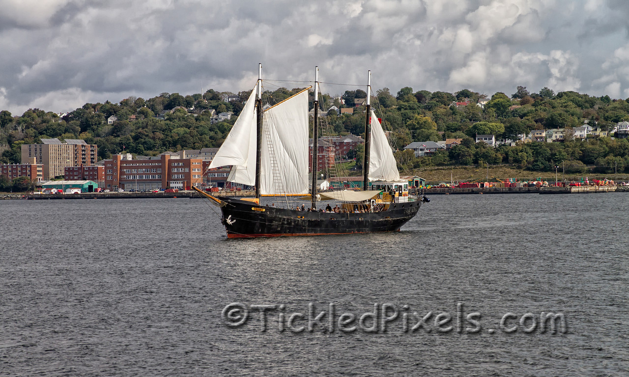 Tall Ship 'Silva' Sails in front of Dartmouth