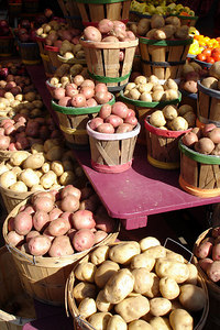 Potatoes at the Marche Jean Talon - Montreal, QC ... October 8, 2006 ... Photo by Rob Page III