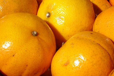 Oranges at the Marche Jean Talon - Montreal, QC ... October 8, 2006 ... Photo by Rob Page III