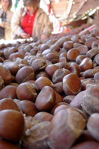 Shopping for nuts at the Marche Jean Talon - Montreal, QC ... October 8, 2006 ... Photo by Emily Conger