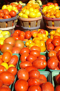 Tomatoes at the Marche Jean Talon - Montreal, QC ... October 8, 2006 ... Photo by Rob Page III