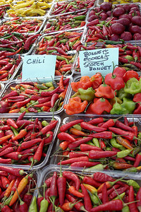 Chili peppers at the Marche Jean Talon - Montreal, QC ... October 8, 2006 ... Photo by Emily Conger