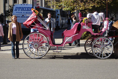 Emily with her pink horse drawn carriage - Montreal, QC ... October 7, 2006 ... Photo by Rob Page III