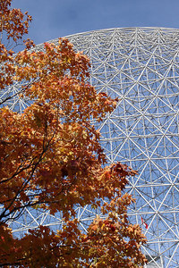The autumn leaves burn next to the Biosphere at the - Montreal, QC ... October 8, 2006 ... Photo by Emily Conger