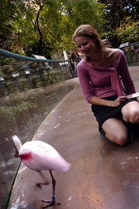 Emily playing with one of the birds at the Biodome in Olympic Park - Montreal, QC ... October 8, 2006 ... Photo by Rob Page III