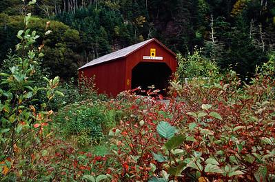 Point Wolfe Bridge, Fundy National Park.  Rebuilt 1992
