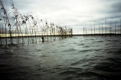 Fishing weir near Navy Island, Passamaquoddy Bay