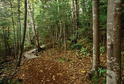 Irving Nature Walk, Squirrel Nature Trail