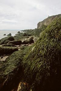 Cape Enrage shoreline at low tide
