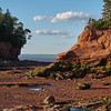 Low Tide at Burncoat State Park #1