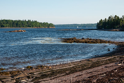 Looking toward Minister's Island at high tide