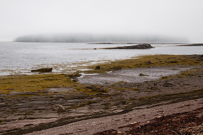 Looking toward Minister's Island in the Bay of Fundy, NB