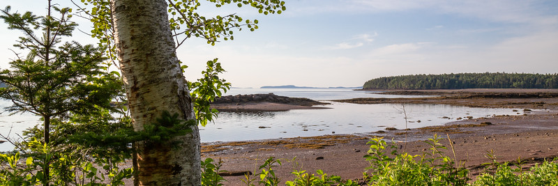 Looking out at Minister's Island and the Bay of Fundy, near St. Andrews, NB