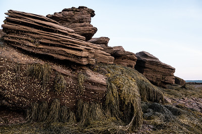 Rock formations that appear as the tide recedes on the Bay of Fundy, near St. Andrews, NB