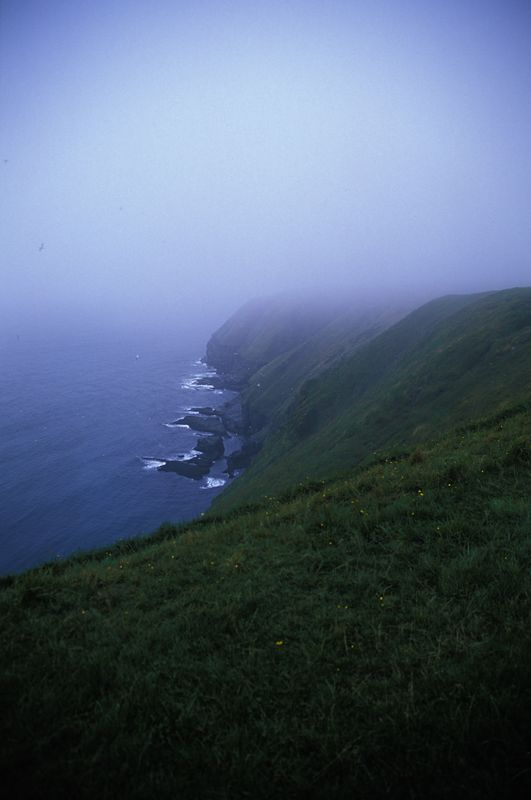 Fog Coming in at Cape St. Marys