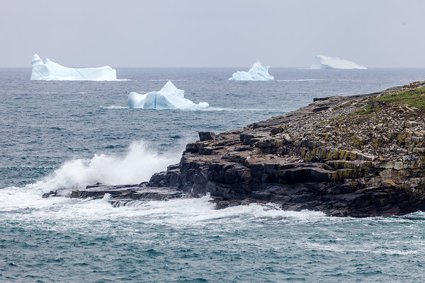 Icebergs along the coast of Cape Bonavista in Newfoundland