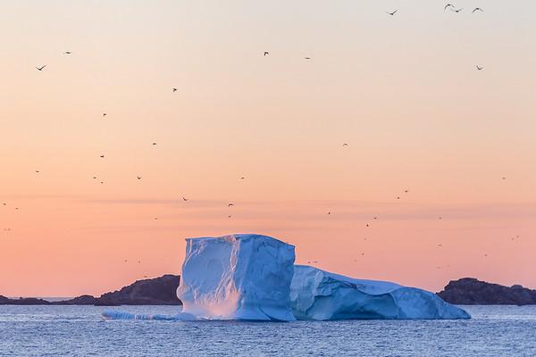 Iceberg during sunset in Twillingate, Newfoundland