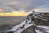 Along the coast of Cape Spear