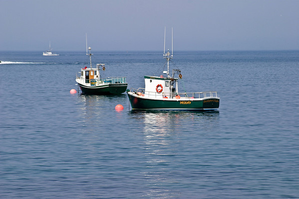 Fishing Boats moored in the outer harbor at Grates Cove, Newfoundland