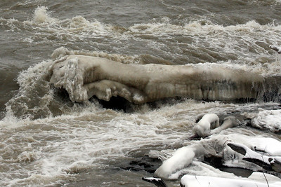 A log is frozen over - Niagara Falls, NY ... December 23, 2008 ... Photo by Rob Page III