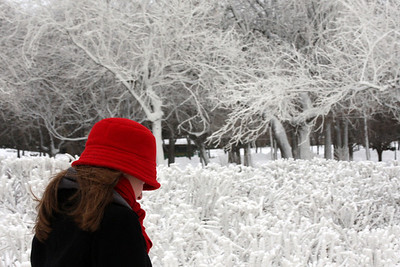 Emily makes her way through the cold - Niagara Falls, NY ... December 23, 2008 ... Photo by Rob Page III