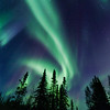 Northern Lights close to Yellownife