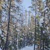 Yellowknife-VD-0291